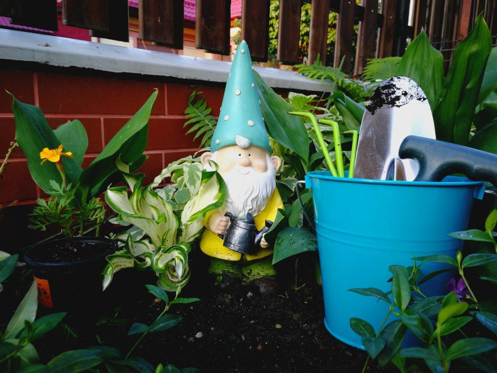 Piticul e responsabil șef cu organizarea grădinii