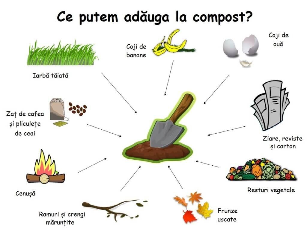 Diagramă cu resturile folosite pentru a obține compostul: iarbă tăiată, coji de banane, coji de ouă, ziare, reviste, carton, resturi vegetale, frunze uscate, ramuri, crengi mărunțite, cenușă, zaț de cafea și pliculețe de ceai