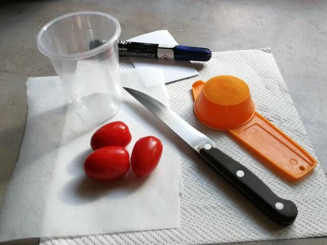 Obiectele necesare pentru recoltarea de semințe pentru răsaduri