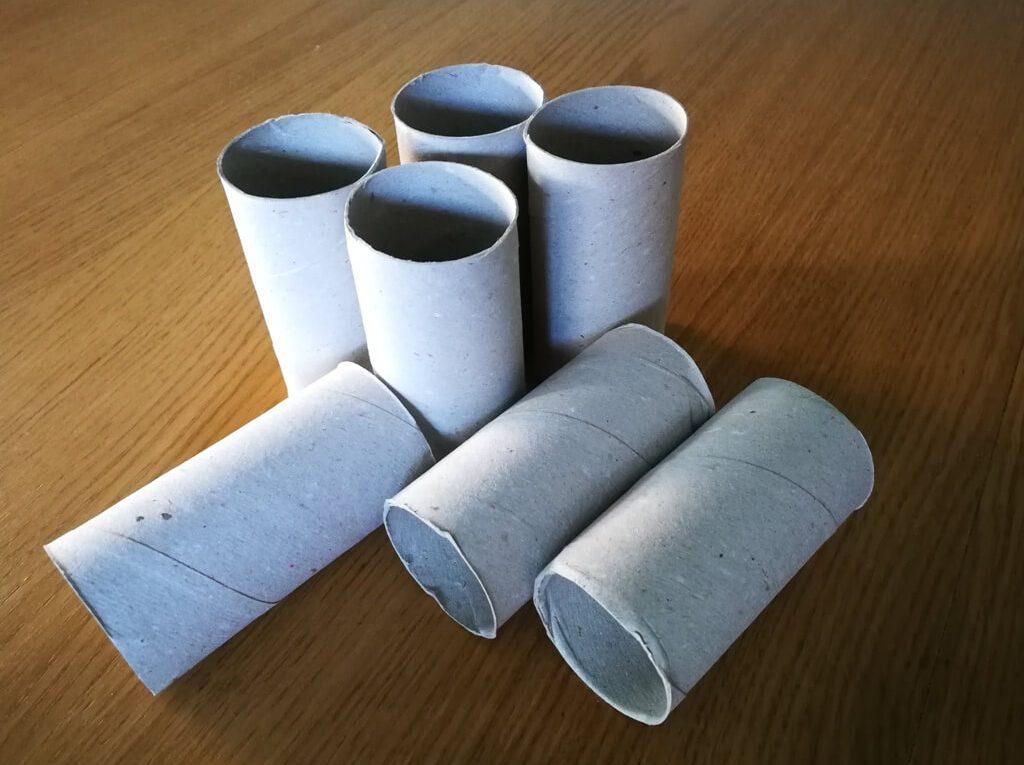 Tuburi din carton? O utilizare neobișnuită în grădină