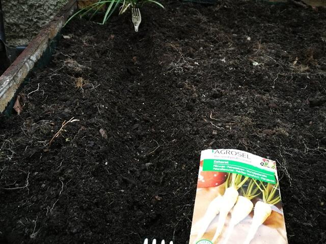Plic cu semințe lângă teren pregătit de semănat