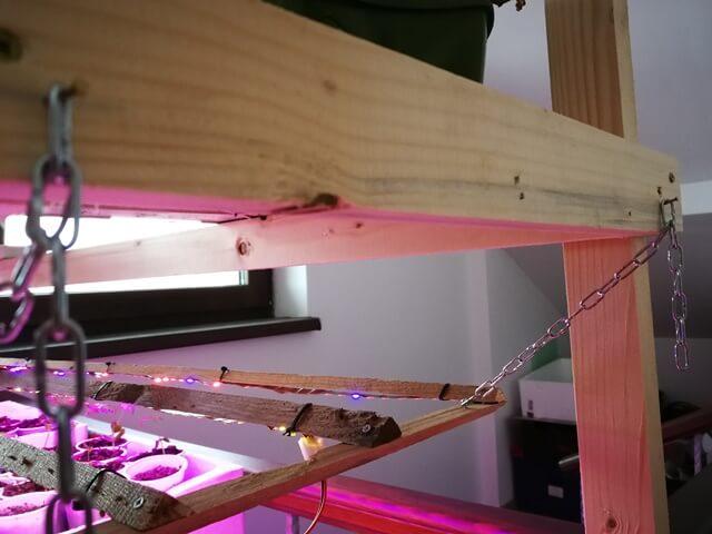 Asamblu pentru iluminat plante suspendat deasupra raftului cu rasaduri cu lant fixat in colt