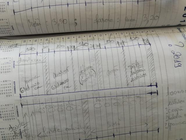 Schita de plan de semant pentru primavara in gradina