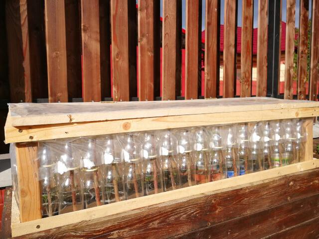 Minisera din sticle de plastic asezate pe lada de lemn