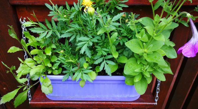 Confecționarea suporților pentru jardiniere
