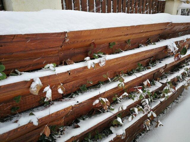 Structură din lemn pentru cultură pe verticală acoperită de zăpadă
