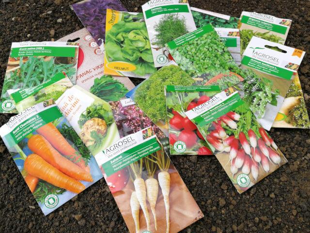 Ce punem in gradina de legume partial insorita?