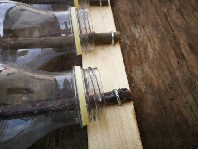 Crenguta ce iese din gatul sticlei de plastic fixata cu scoaba pe scandura